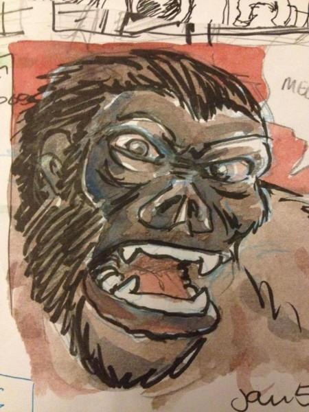 gorilla-grady